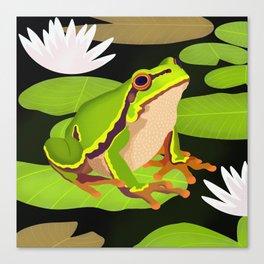 Lilypads Bullfrog Canvas Print