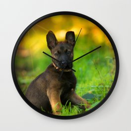 Wonderful autumn forest with curious dog puppies Wall Clock