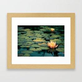 Celladora Framed Art Print