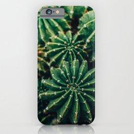 Cactus Study 2 iPhone Case