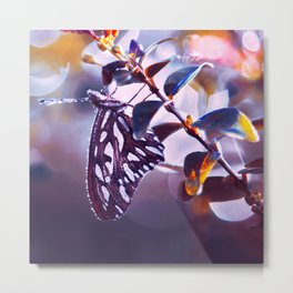Silver Wings Metal Print
