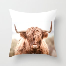 Highland Cow in a Field Southern Throw Pillow