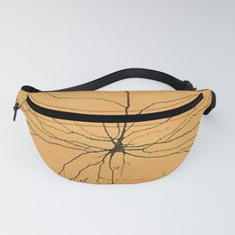 Pyramidal Cell in Cerebral Cortex Fanny Pack
