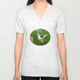 Hummingbird XI Unisex V-Neck