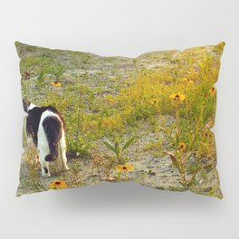 this miss in sunset I Pillow Sham