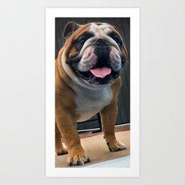 Meatloaf:English Bulldog Art Print