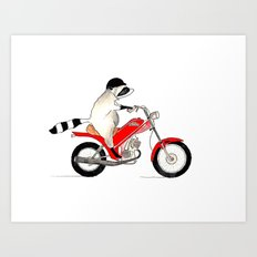Raccoon on a Motorcycle Art Print