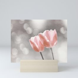 Peach Coral Tulip Photography, Peach Flower Photograph, Coral Grey Nursery Photo Print Mini Art Print