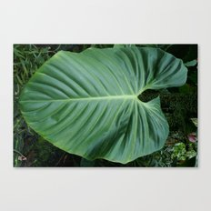 Tropical Foliage Canvas Print