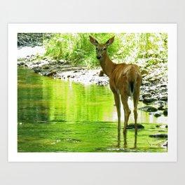 Oh my deer ! Art Print