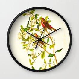 Lesser Red-Poll Bird Wall Clock