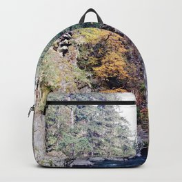 Elwha River - Olympic National Park Backpack