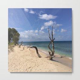 Natural Beach Art Metal Print