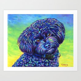 Opalescent Black Toy Poodle Art Print