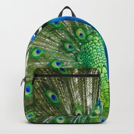 Beautiful Male Peacock Backpack