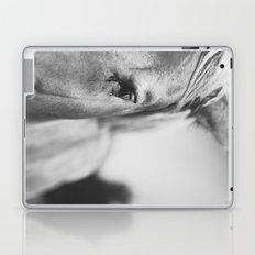 The Spirited Horse Laptop & iPad Skin