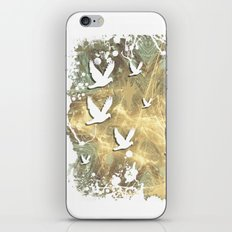 Birds on beige messy kaleidoscope iPhone & iPod Skin