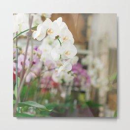 The Orchid Shop in Paris Metal Print