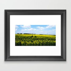 Rapeseed Field Framed Art Print