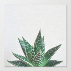 Aloe Tiki Canvas Print
