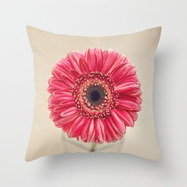 The Shopkeeper's Gift Throw Pillow