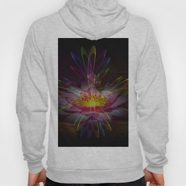 Abstract in perfection 95 Hoody