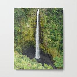 Akaka falls Metal Print