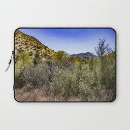 Fresh Green Plants Growing Near Underground Water by the Mountains in the Anza Borrego Desert Laptop Sleeve
