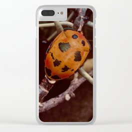 Cotton Harlequin Bug Clear iPhone Case
