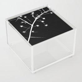 Twigs and Thorns Photogram Acrylic Box