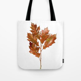 English Oak Cartoon Tote Bag