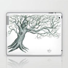 Runes Laptop & iPad Skin