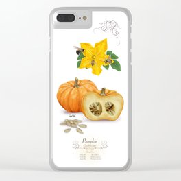 Pumpkin and Pollinators Clear iPhone Case