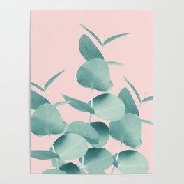 Eucalyptus Leaves Green Blush #1 #foliage #decor #art #society6 Poster