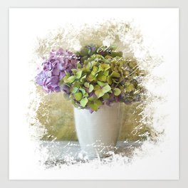 Distressed Hydrangea with French Ephemera Still Life - Shabby Chic Floral Pastel Art Print