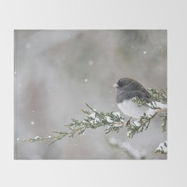 Snowbird on a Snowy Branch (Junco) Throw Blanket