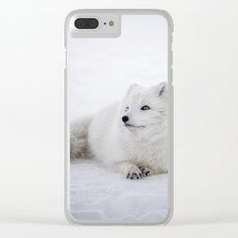 White snow arctic fox Clear iPhone Case
