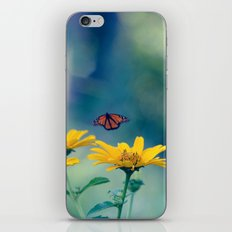 Summer garden iPhone & iPod Skin