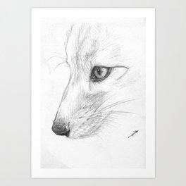 Sketchy Fox Face Study Art Print