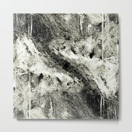 Natural Abstraction Metal Print