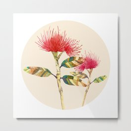 Pohutukawa flower Metal Print
