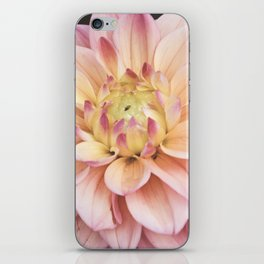 Dahlia Sweet Pixie iPhone Skin