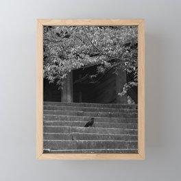 Raven on the Steps Framed Mini Art Print