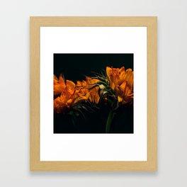 Sunfire Framed Art Print