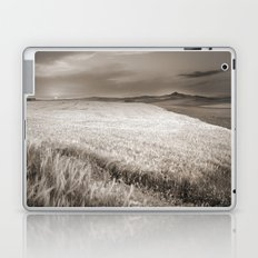 Windy at the cereal fields at sunset Laptop & iPad Skin