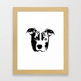Pit Bull Terrier Dog Framed Art Print
