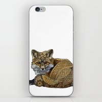kit king iPhone & iPod Skins featuring Fox Kit by ZHField