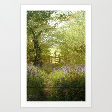 bluebell meadows Art Print
