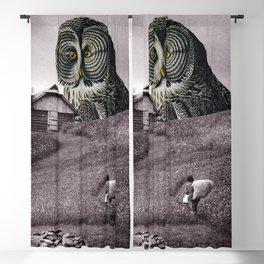 Nocturnal Blackout Curtain