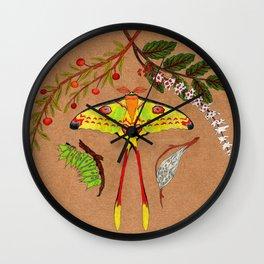Comet Moth (Argema Mittrei) Wall Clock